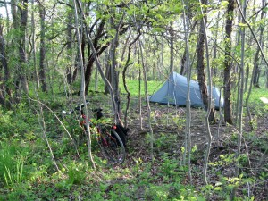 Camping in the Finger Lakes National Forest